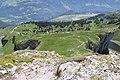 Trail down the Tour d'Aï (14487244502).jpg