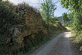Trail in Cabrières, Hérault 01.jpg