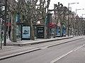 Tramway Strasbourg Universités.JPG