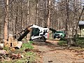 Tree mortality Crews working in the Sierra National Forest (38034711345).jpg