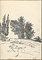 Trees, Bushes and Vegetation (Smaller Italian Sketchbook, leaf 40 recto) MET DP269448.jpg