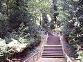 Treppe park mg.JPG