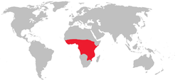 Range of the tsetse fly