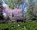 Tudor Place in April (23258118025).jpg