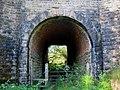 Tunnel under Railway - geograph.org.uk - 567527.jpg