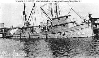 USS <i>Menhaden</i> (SP-847)