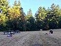 Uke on the lawn (19980635812).jpg