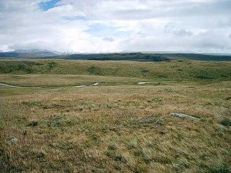Mammoth steppe - Image: Ukok Plateau