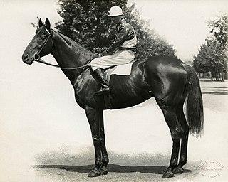 Toorak Handicap thoroughbred horse race held in Melbourne