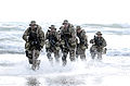 United States Navy SEALs 553.jpg