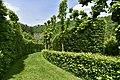 Végétation luxuriante d'un labyrinthe (29382549063).jpg