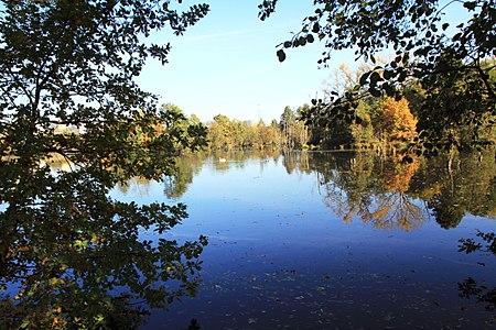 Pond Pískovna (in Czech Sandpit), former sandpit in Nature park V pískovně near of Dolní Počernice,  Prague,  Czech Republic