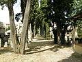Vecchio cimitero ebraico di firenze 01.JPG