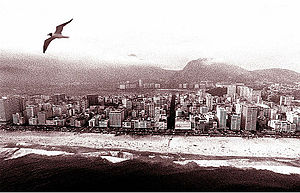Ipanema - Vieira Souto - Lagoa Rodrigo de Freitas, seagull
