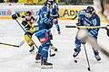 Vienna Capitals vs Fehervar AV19 -114.jpg