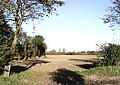 View across fields from Brook Road, Tillingham - geograph.org.uk - 275828.jpg