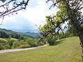 View of Bjelusa - 7309.CR23.jpg