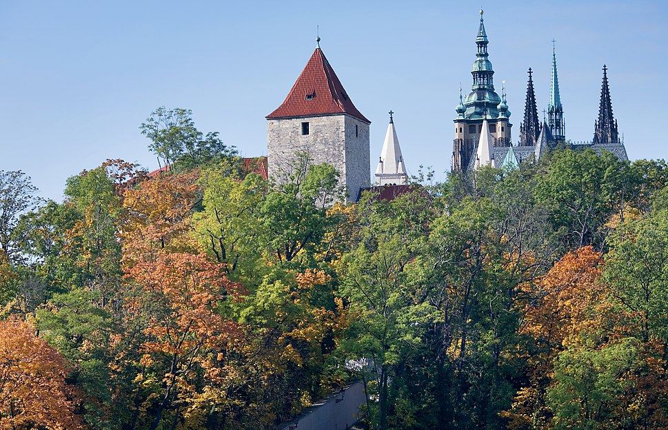 View of the Castle through a forest, Prague - 9493