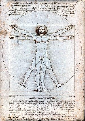 Hombre De Vitruvio Wikipedia La Enciclopedia Libre
