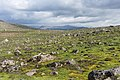 Volcanic landscape, taken from the hiking trail Reykjavegur, Iceland 06.jpg