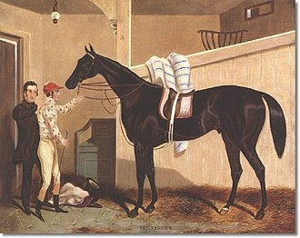 Voltigeur (horse) - Voltigeur in his stable, by William Barraud (1810-1850)