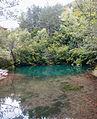 Vrelo reke Mlave, Žagubica 31.jpg