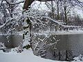 WIELKANOC 13r. Park w bajecznej zimowej szacie ,-)) 9 - panoramio.jpg