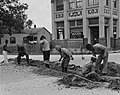 WPA workers laying a water main in Madisonville Louisiana in 1937.jpg