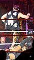 WWE 2014-05-22 21-35-42 ILCE-6000 1879 DxO (14311758005).jpg