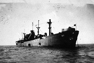 USS <i>Raccoon</i> (IX-127)