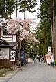 Walking towards Zuiganji (2456116722).jpg