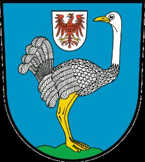 FC Strausberg - Image: Wappen Strausberg