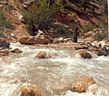 Water Canyon - tropic ditch 2.jpg