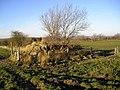 Water for Livestock - geograph.org.uk - 1105360.jpg
