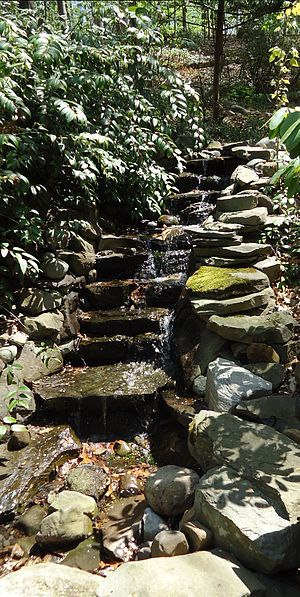 Short Hills, New Jersey - Waterfall garden at Hartshorn Arboretum in Short Hills.