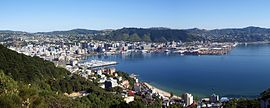 Wellington Panorama View.jpg