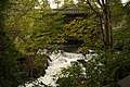 Whatcom-Creek-Falls-Lookup-Upstream-Toward-Prospect-Street-Bridge.jpg