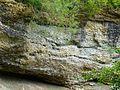 WikiProjekt Landstreicher Geotop Scheidegger Wasserfälle 17.jpg