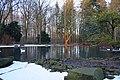 Wildpark Tannenbusch Teich.jpg