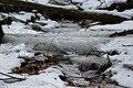 Willebadessen - 2018-03-01 - um Karlsschanze (12).jpg