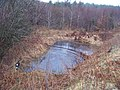 Woodland pond - geograph.org.uk - 1770826.jpg