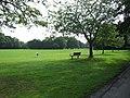 Worden Park - geograph.org.uk - 1385158.jpg
