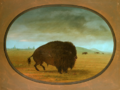 Wounded Buffalo Bull.PNG