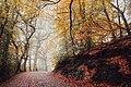 Wrekin Hill in England (Unsplash).jpg