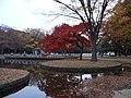 Yoyogi Park - panoramio (4).jpg