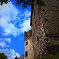 Zamek Świny. - panoramio.jpg