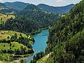 Zaovine, Serbia - panoramio (3).jpg