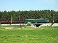 Zavodoukovsk Transsib 2237 km.jpg
