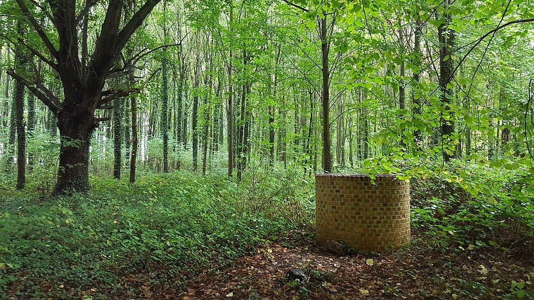 Waterput op de top van de heuvel Sint-Jansberg in het bosdomein Sint-Jansberg, Zelem, Halen, Limburg, België
