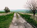 'Other route with public access', near Hackpen, Wiltshire - geograph.org.uk - 383353.jpg